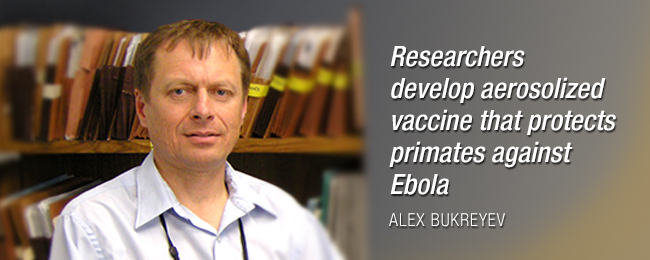 Research Spotlight - Bukeyrev