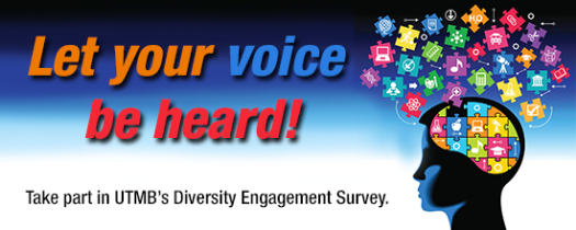 Diversity Engagement Survey