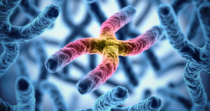 Researchers find new gene interaction associated with increased MS risk