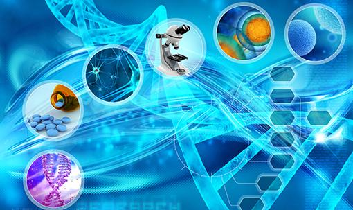 Dept_Biochemistry and Molecular Biology