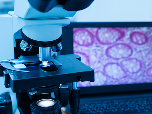 Research Histopathology Services_image