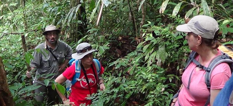 Borneo_Nikos_Lab