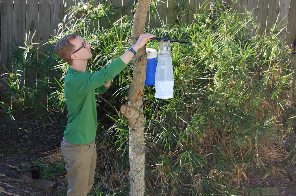 Graduate student Chris Roundy checks one of the 20 mosquito traps located on Galveston Island.