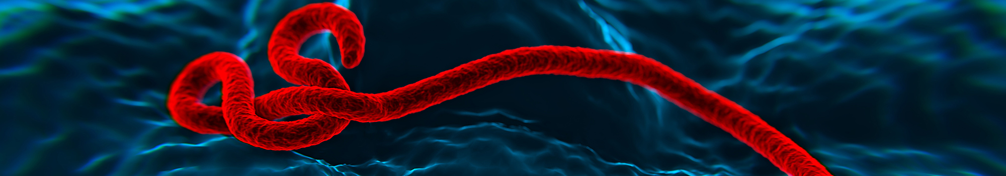 adj_ebola_scsb_header