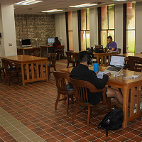 Students studying in computer room