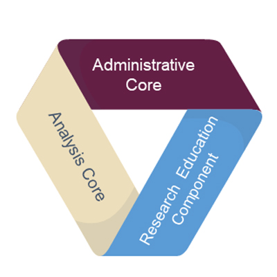 "ribbon with text, ""Administrative Core, Analysis Core, Research Education Component"""