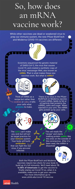 mRNA Info