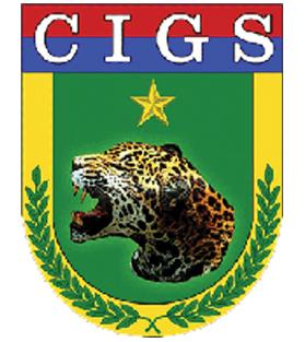 Partner_CIGS