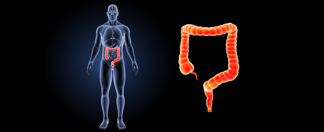 Colorectal Health