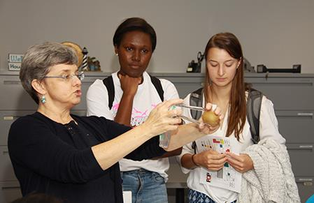 Faculty demonstrate procedures during hands-on workshop.