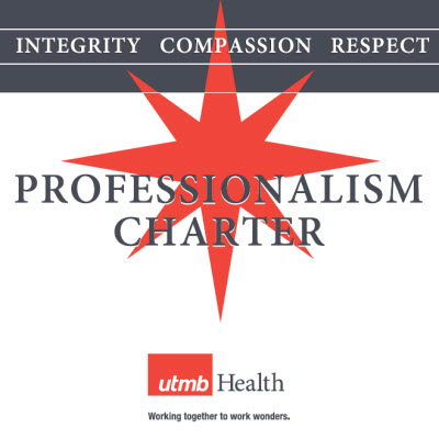 Professionalism Charter