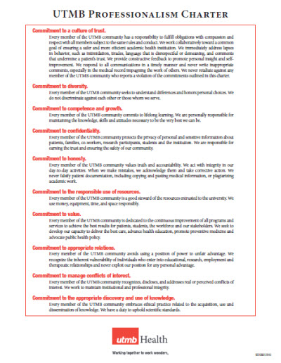Professionalism Charter One Pager