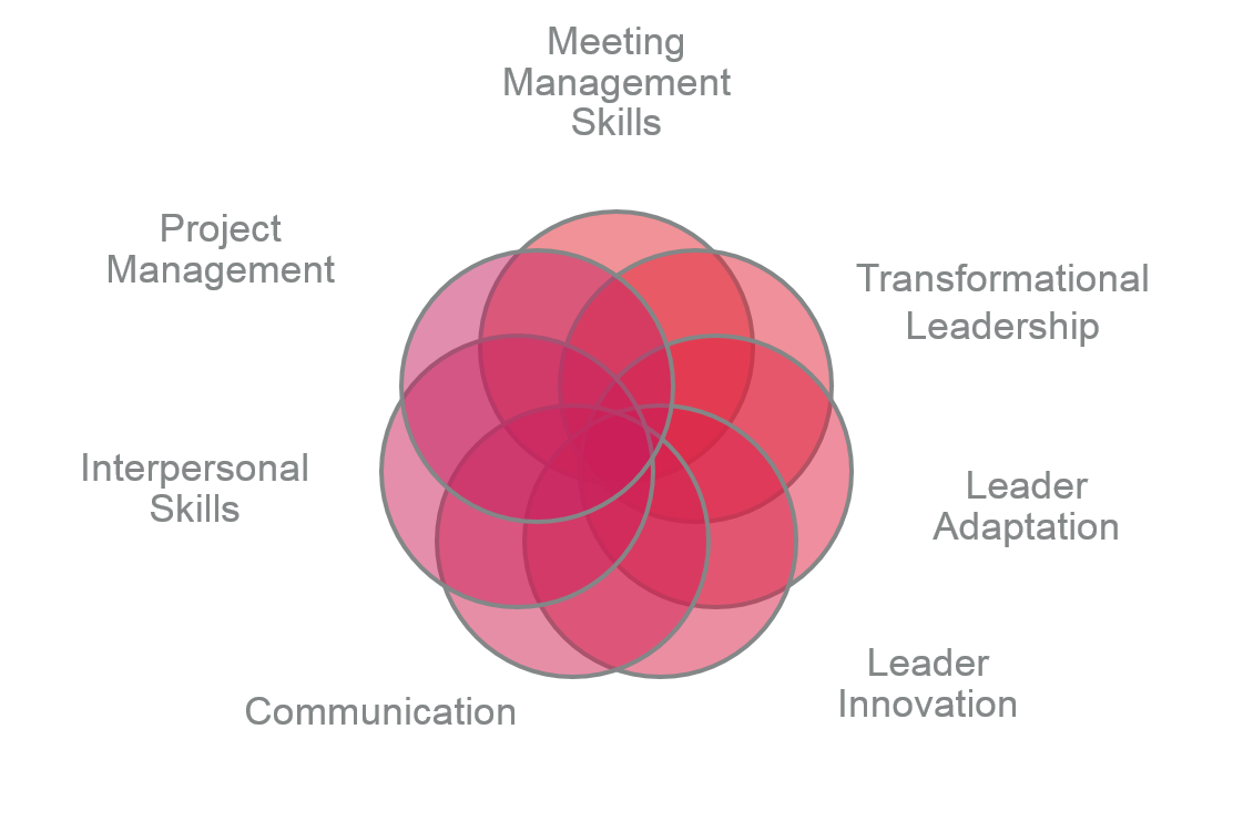 UTMB Team Leader Competency Model: The