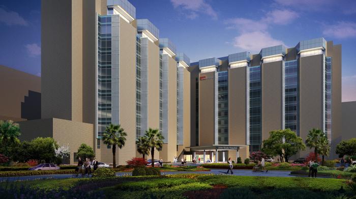 widescreen rendering of JohnSealy Hospital